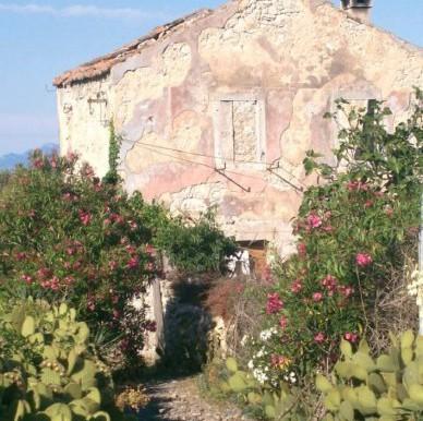 Haus in der Nähe vom Meer in Punta Kriza-Insel Cres (10)