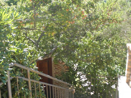 Wunderschöne Haus in Nerezine-Mali Losinj (1)
